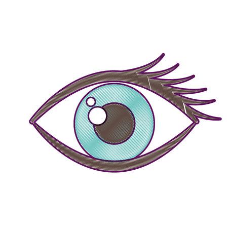 cartoon eye look eyebrow visual icon vector illustration
