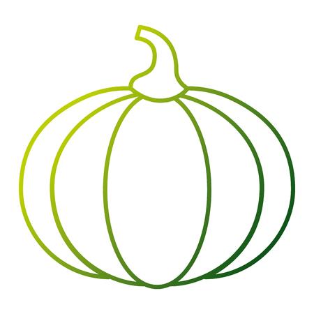 Pumpkin icon Illustration