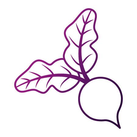 사탕무는 야채를 남긴다. 일러스트