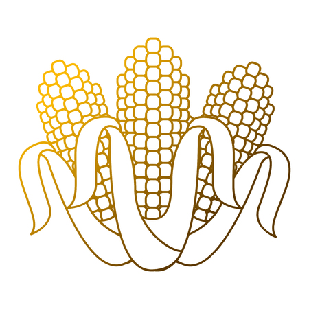 Three corn grain food nutrition agriculture vector illustration Illusztráció