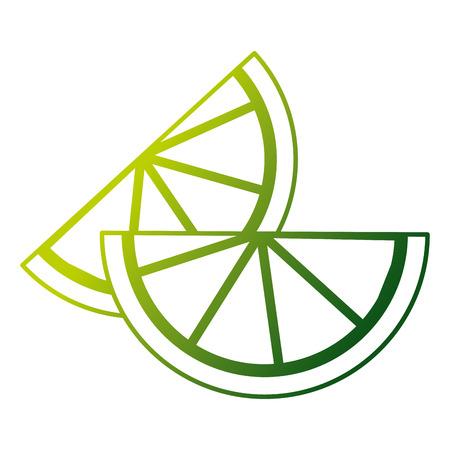 Sliced pair lemon citrus fruit vector illustration