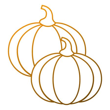 Two pumpkin vegetable vegetarian diet vector illustration Vettoriali