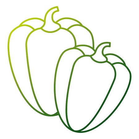 쌍 고추 야채 성분 양념 벡터 일러스트 레이션