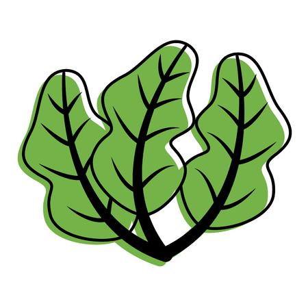 spinazie voedsel gezond vers beeld vector illustratie