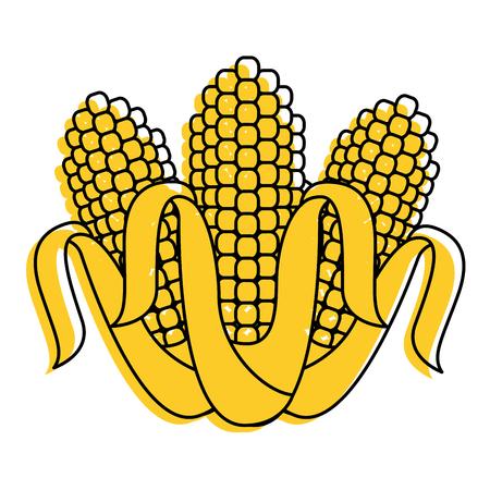 three corn grain food nutrition agriculture vector illustration Illusztráció