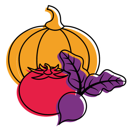 pumpkin tomato and beet vegetables fresh vector illustration