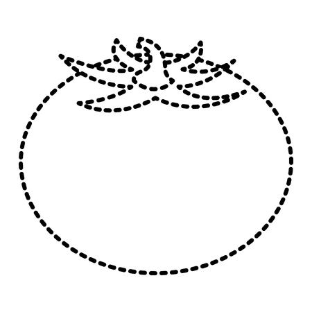 Fresh tomato vegetable food healthy vector illustration