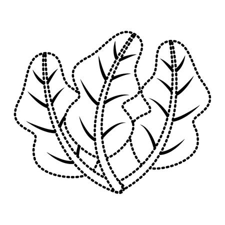 Gezonde verse het beeld vectorillustratie van het spinazievoedsel