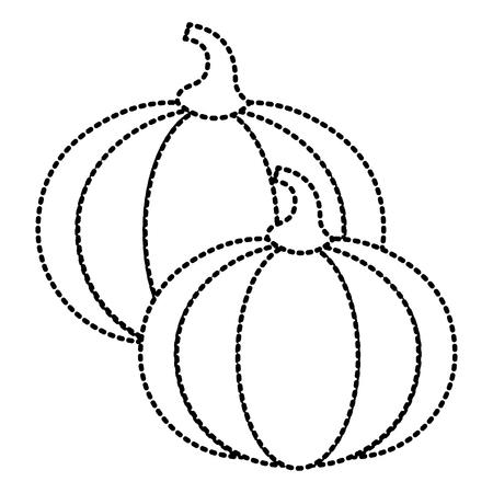 Two pumpkin vegetable vegetarian diet vector illustration Illustration