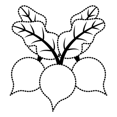 Illustration vectorielle de trois betteraves légumes aliments sains Banque d'images - 93314949