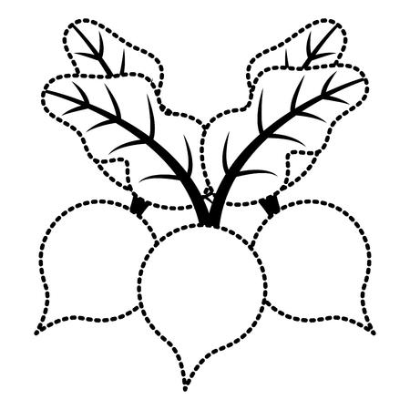 Vectorillustratie van het drie bieten de plantaardige gezonde voedsel Stock Illustratie