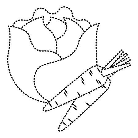 Sla en wortelen groenten vers voedsel vectorillustratie Stockfoto - 93314963
