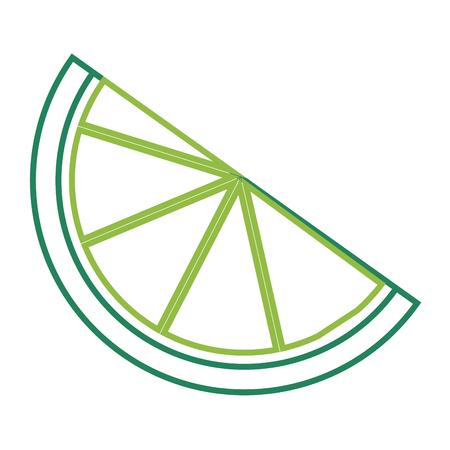 Slice of lemon citrus fruit fresh image vector illustration