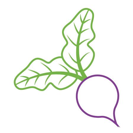 biet verlaat plantaardige vers dieet voedsel vector illustratie Stock Illustratie