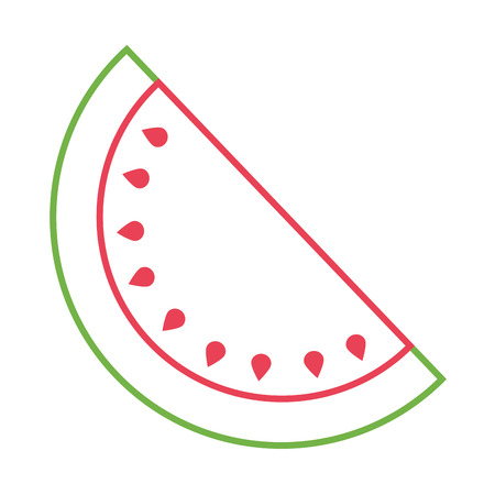 fruit juicy watermelon harvest food vector illustration