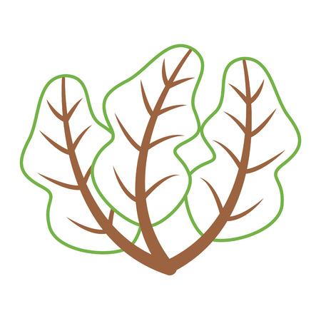 Gezonde verse het beeld vectorillustratie van het spinazievoedsel. Stock Illustratie