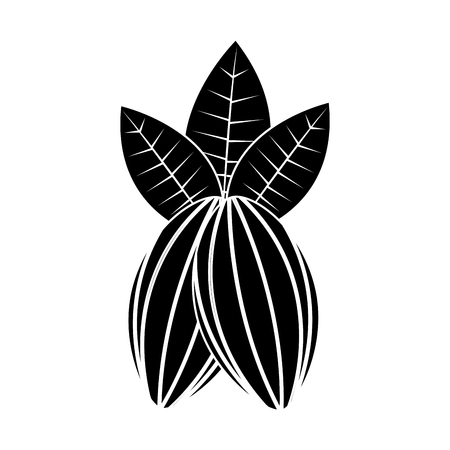 Granos de cacao y hojas fruta comida saludable ilustración vectorial Foto de archivo - 93324481