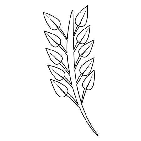 枝葉茎ブルーム画像ベクトルイラストアウトライン