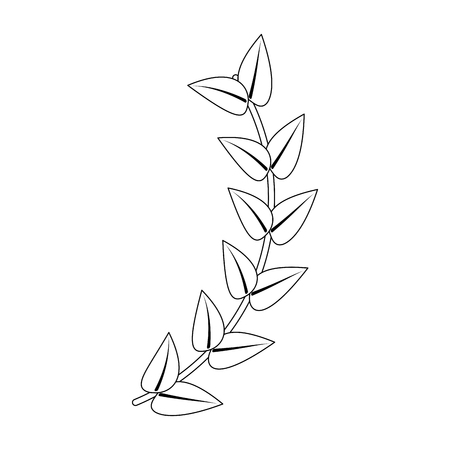 branch leaves stem bloom image vector illustration outline 일러스트