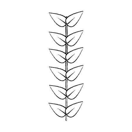 Leaves with stem icon image vector illustration design