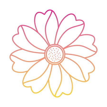 flower natural petal decoration image vector illustration   line color