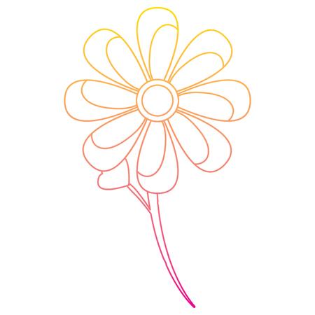 Flower stem leaves bloom floral ornament image vector illustration line color