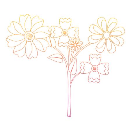 아름다움 꽃 배열 자연 장식 벡터 일러스트 라인 색상 일러스트