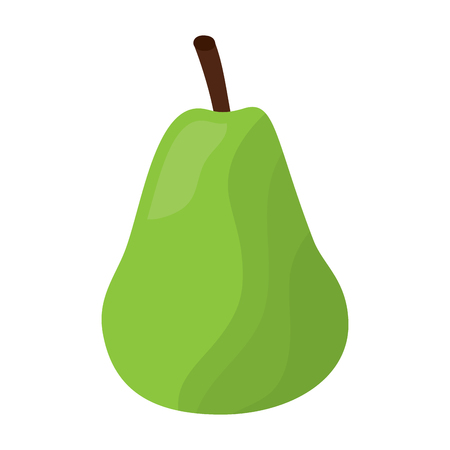 pear fresh fruit food healthy vector illustration