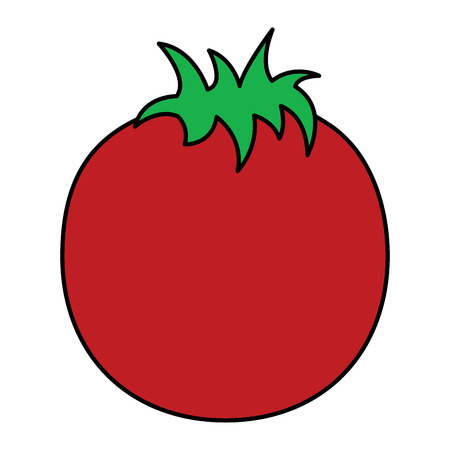 tomato whole  fruit icon image vector illustration design