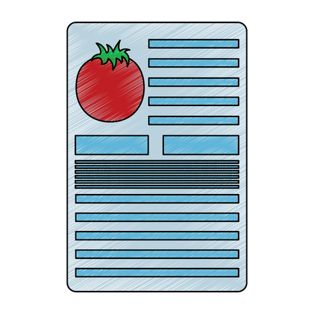 Tomato information document fruit icon image vector illustration design