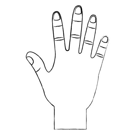 opened hand palm counting fingers number five vector illustration Çizim