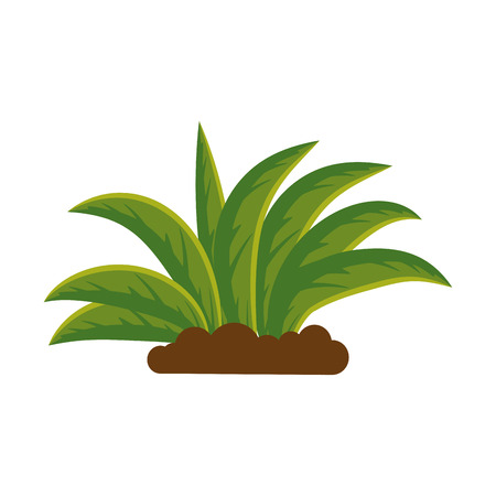 plant cultivated isolated icon vector illustration design