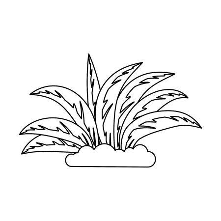plant cultivated isolated icon vector illustration design Stock fotó - 93529535
