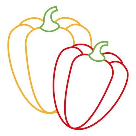 pair pepper vegetable ingredient spice vector illustration