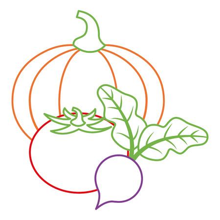 호박 토마토와 사탕 무 우 야채 신선한 벡터 일러스트