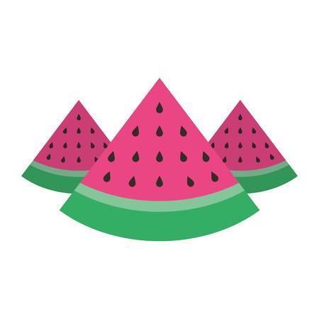 three slice watermelon fruit tropical vector illustration