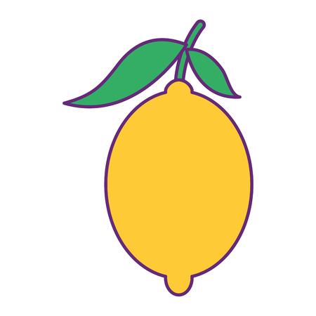 신선한 감귤 류의 과일 전체와 잎 레몬 벡터 일러스트 레이션 일러스트