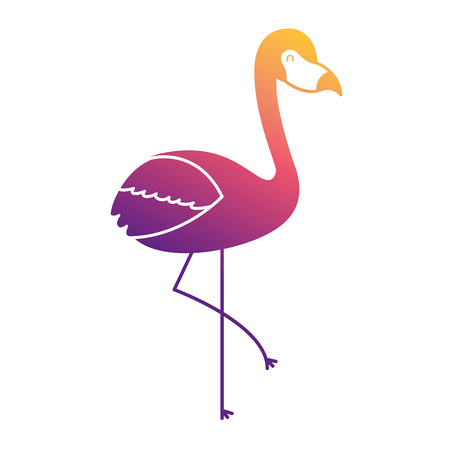 pink flamingo bird exotic image vector illustration Ilustração