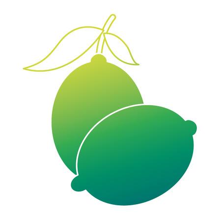 2つのフルーツシトラスレモンジュースアイコンベクトルイラストグリーンデザイン  イラスト・ベクター素材