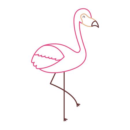 flamingo bird exotic animal image vector illustration color line design