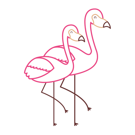 two flamingo bird exotic tropical animal image vector illustration color line