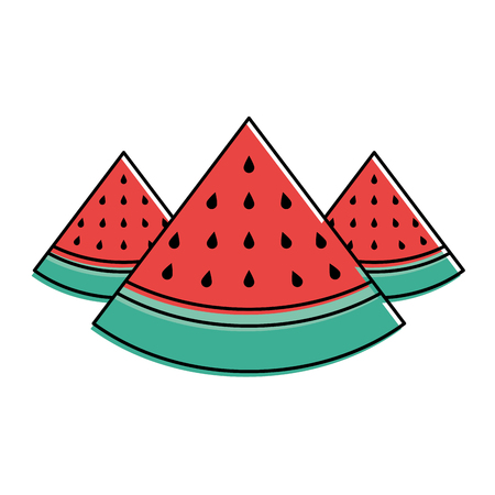 three slice watermelon fruit tropical vector illustration