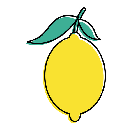 fresh citrus fruits whole and leaves lemon vector illustration Ilustração