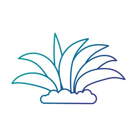 Plant gecultiveerd geïsoleerd pictogram vector illustratie ontwerp Stockfoto - 93565768