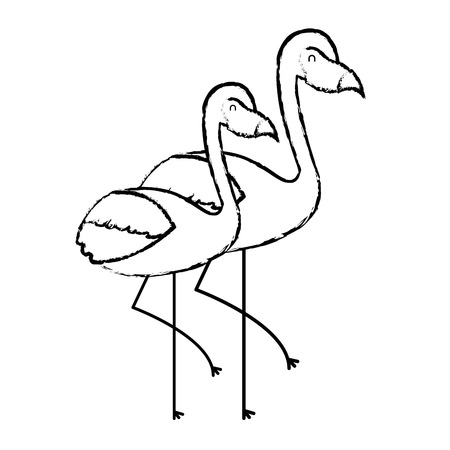 two flamingo bird exotic tropical animal image vector illustration sketch design