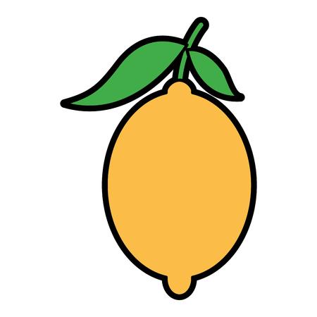 Fresh citrus fruits whole and leaves lemon vector illustration