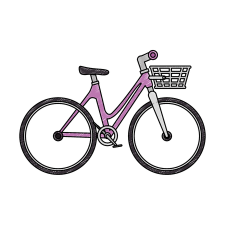 Bicycle vehicle with basket vector illustration design.