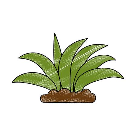 植物栽培分離アイコンベクトルイラストデザイン  イラスト・ベクター素材