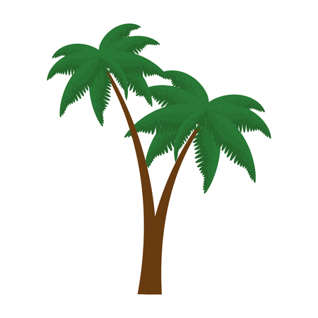 trees palms beach icons vector illustration design