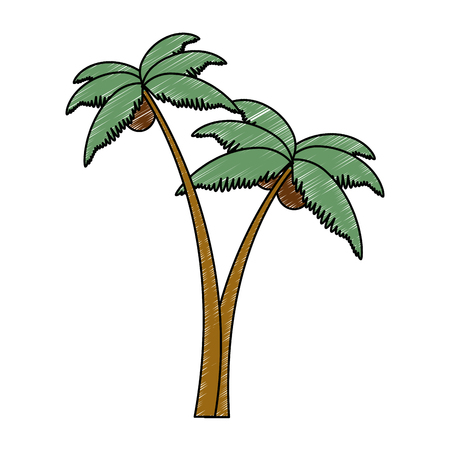 bomen palmen strand iconen vector illustratie ontwerp